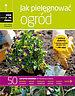 Jak pielegnować ogród